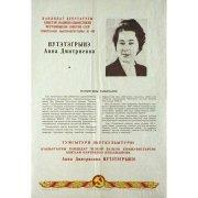 Плакат. Кандидат в депутаты Нутэтэгрынэ Анна Дмитриевна