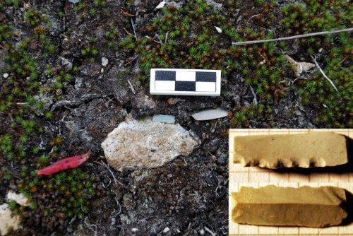 Археологические исследования на Охотско-Колымском водоразделе и в устье Наяхана