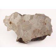 Отпил от образца метеорита