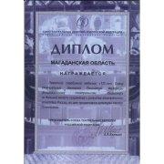 Диплом Союза театральных деятелей