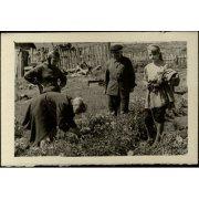 Фотография. Горазеев В.И. с юннатами