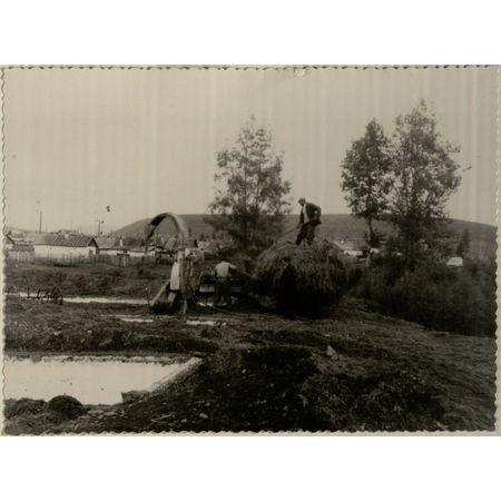 Фотография. Загрузка сена в бункер