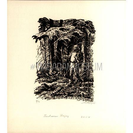 Бруни И. Л. Иллюстрация к книге